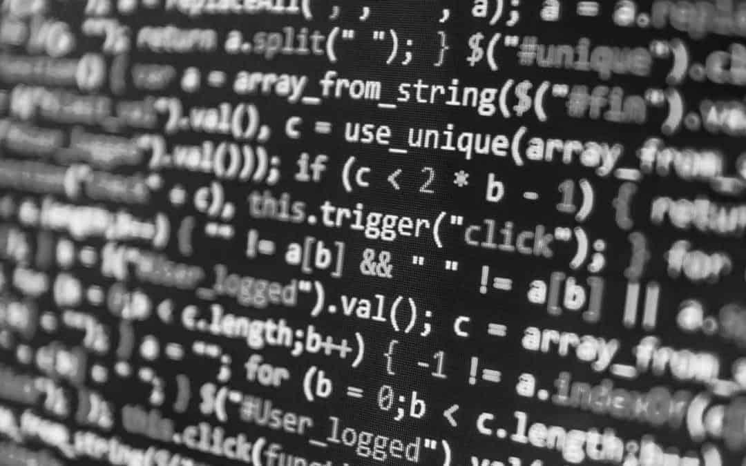 Programavimo verslas