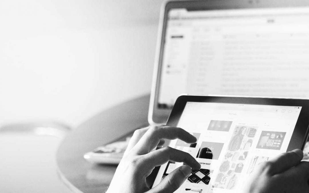 Kokios yra pagrindinės interneto svetainių rūšys?