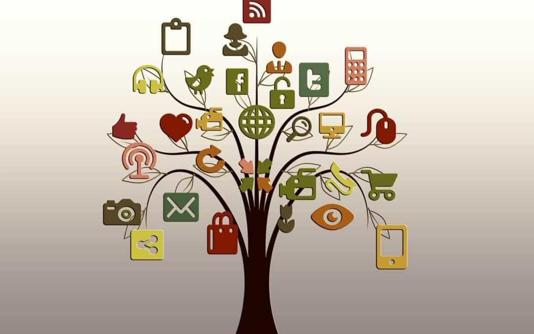 Socialinių tinklalapių kūrimas