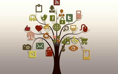 Socialinių tinklalapių kūrimas, tikslinė reklama